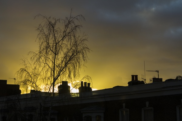 Sunset in Clapton, February 2013